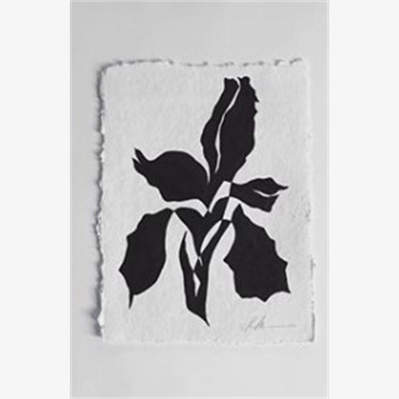 Flourish Series Continuous Line Botanicals 1, 2018