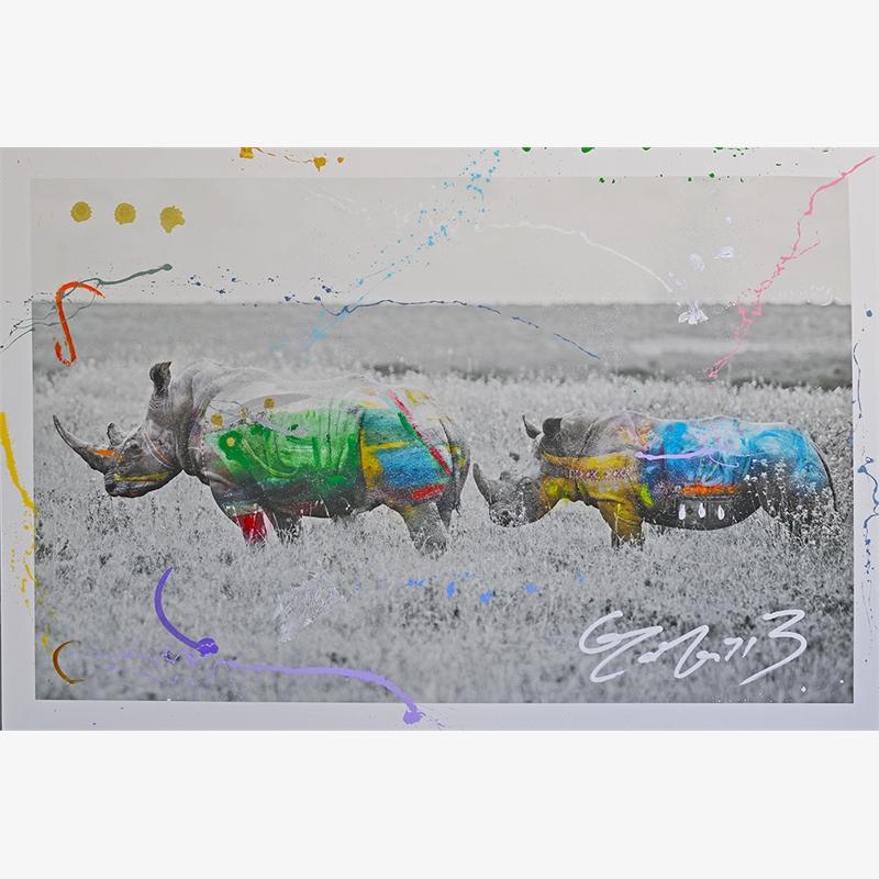 Rhino Duet by Arno Elias