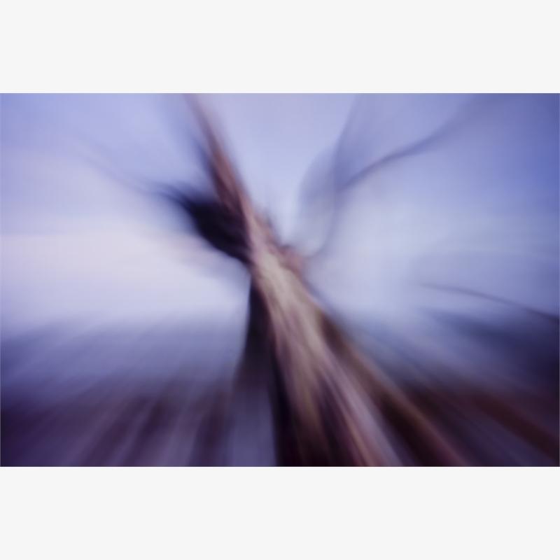 """Still"" Life 14 by Paolo Nicola Rossini"