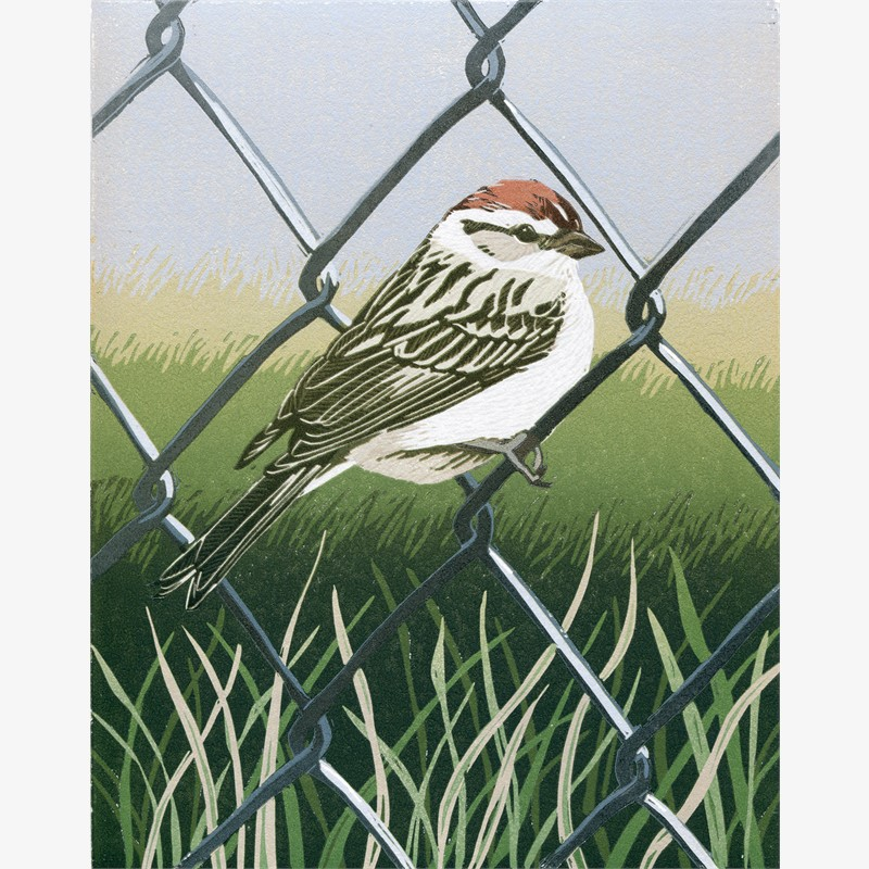 No Fences for Small Things (unframed)
