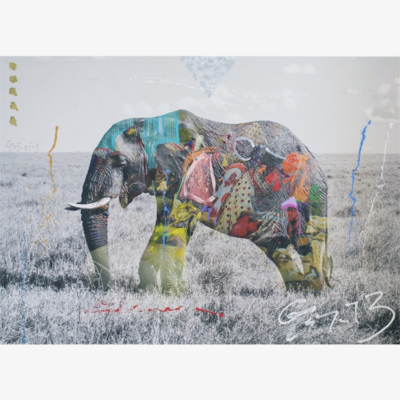 Tembo 4 by Arno Elias