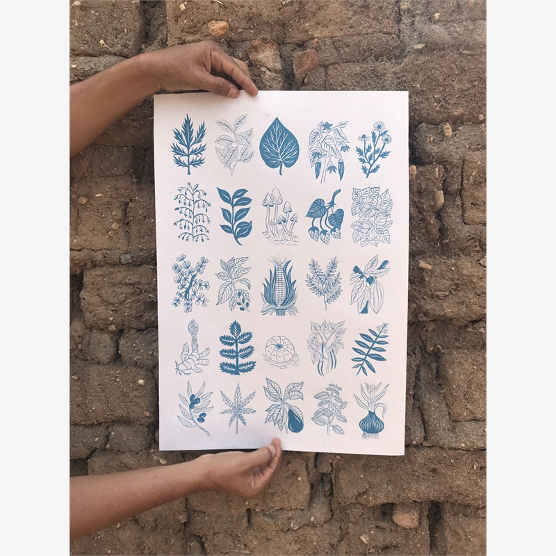Sabiduría Salvaje (Wild Wisdom, Blue), 2019