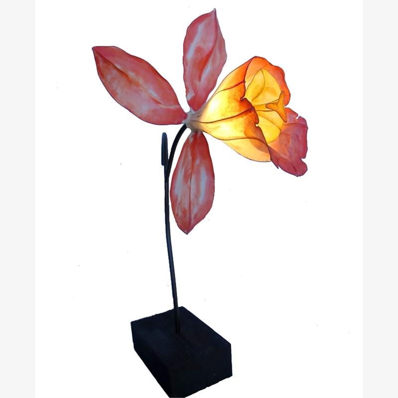 Self Pollinating   Crimson Orchid, 2018