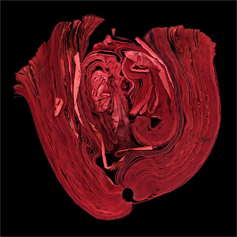 Heart (3/9), 2011