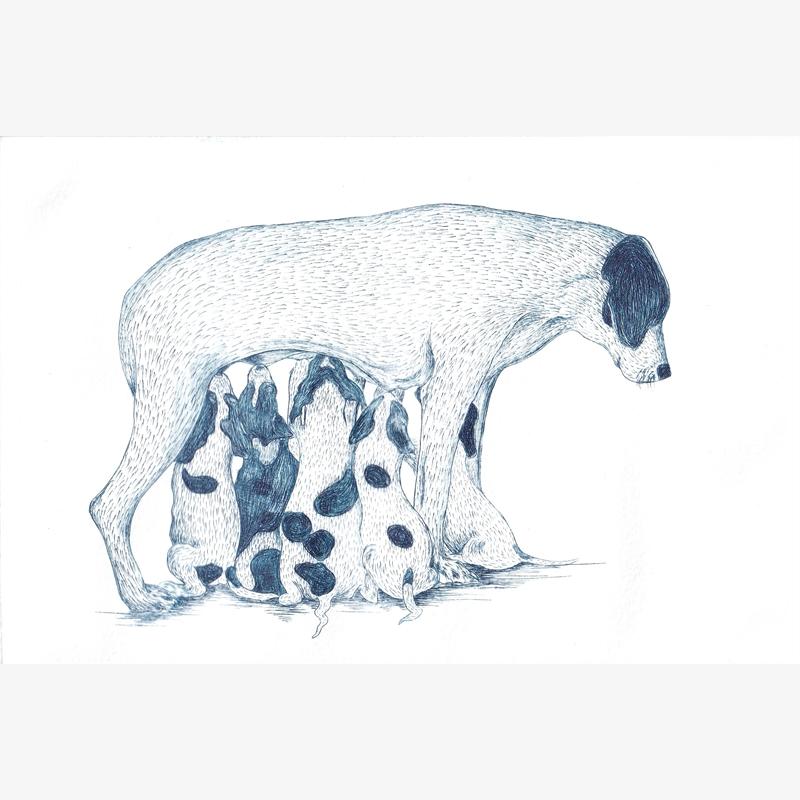 Familia II (Perros), 2019