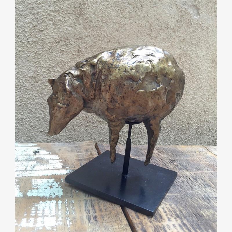 Wild Pig (grazing) (1/15)