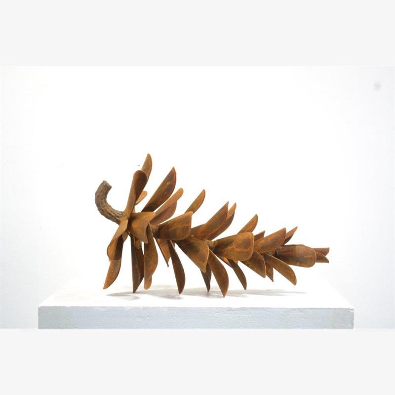 Pine Cone 20 - #20-116