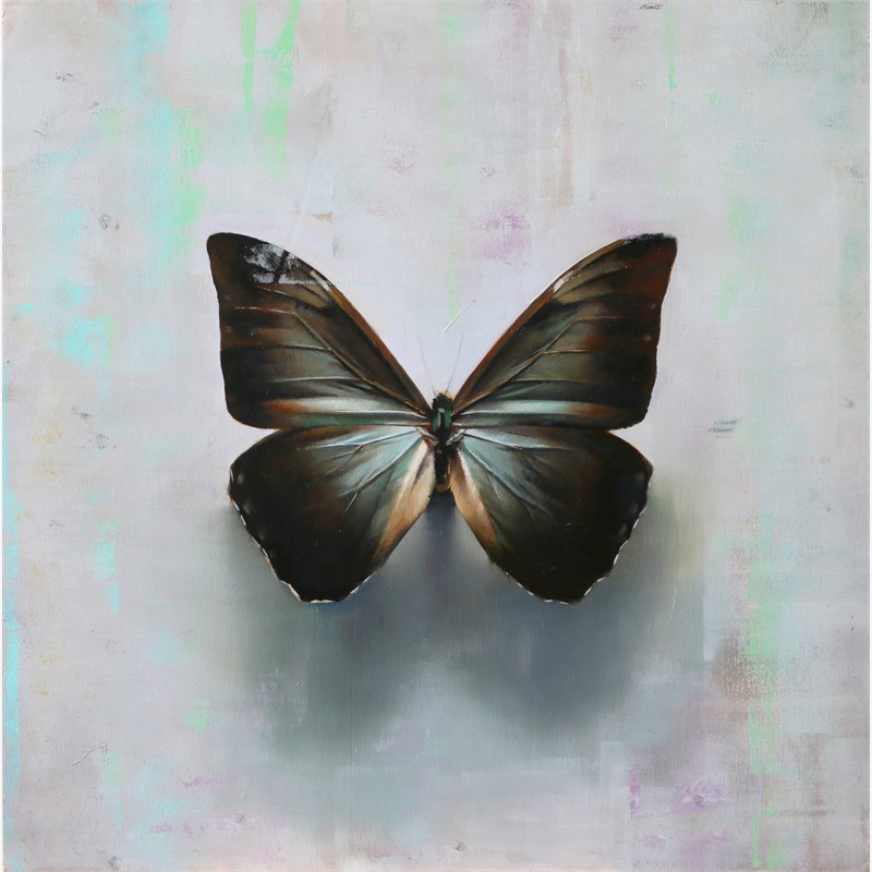 Butterfly, A.a