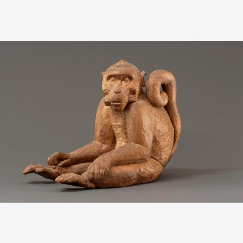Monkey, 2011