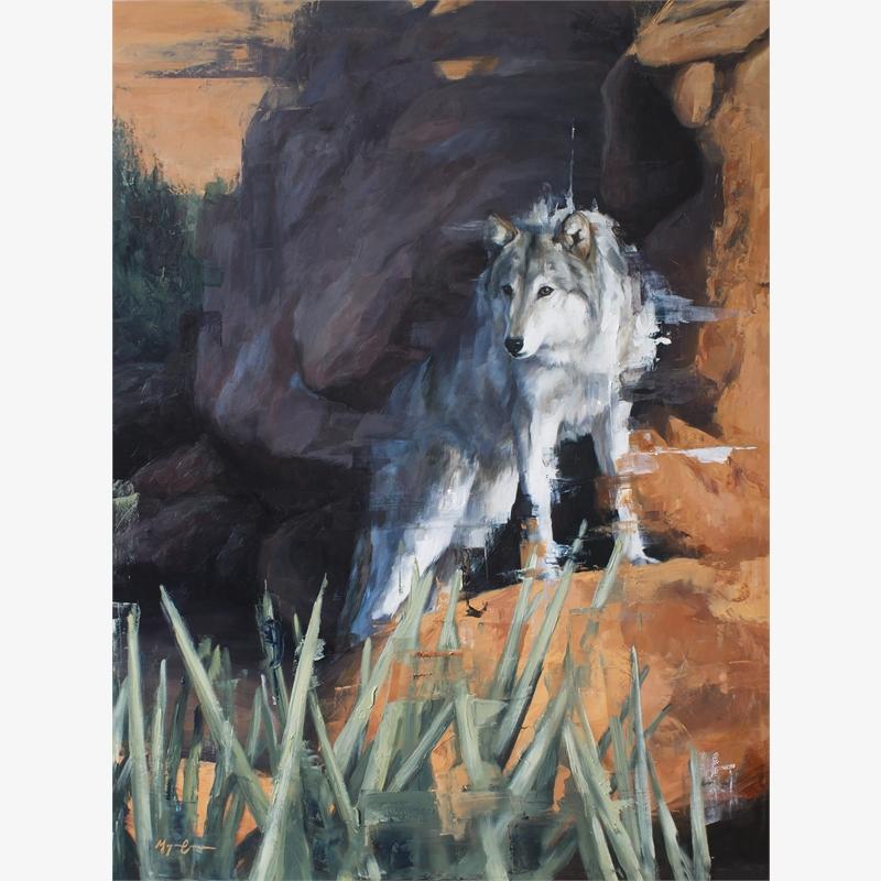 Canyon Wolf