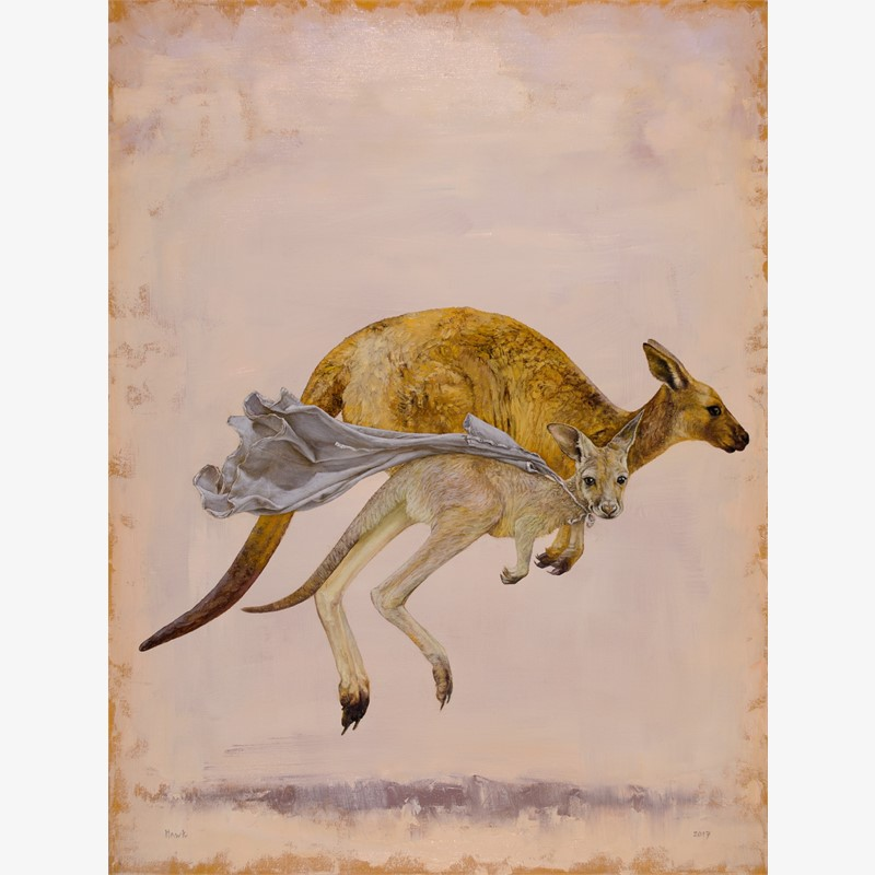The Children's Hospital Kangaroo commission