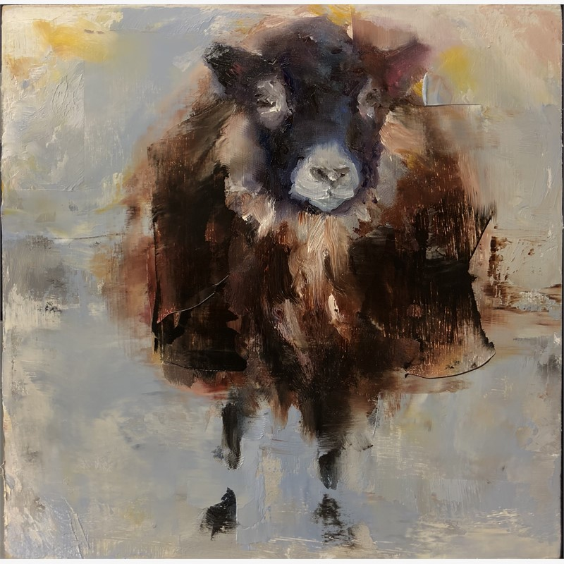 Sheep Dance, 2018