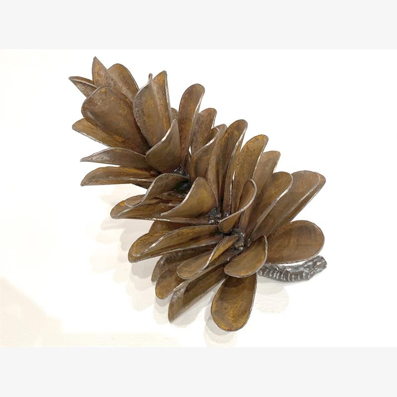 Pine Cone - 19-522