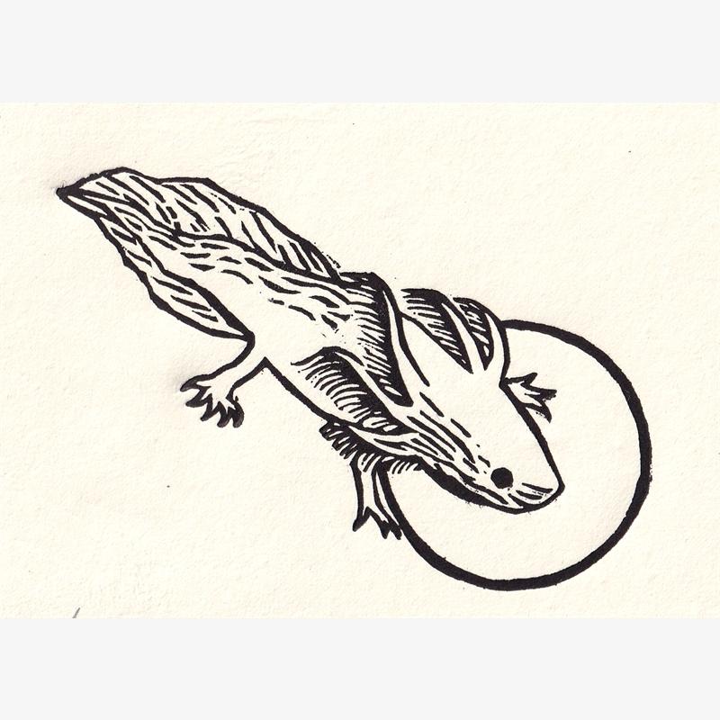 Salamandra (13/30), 2020