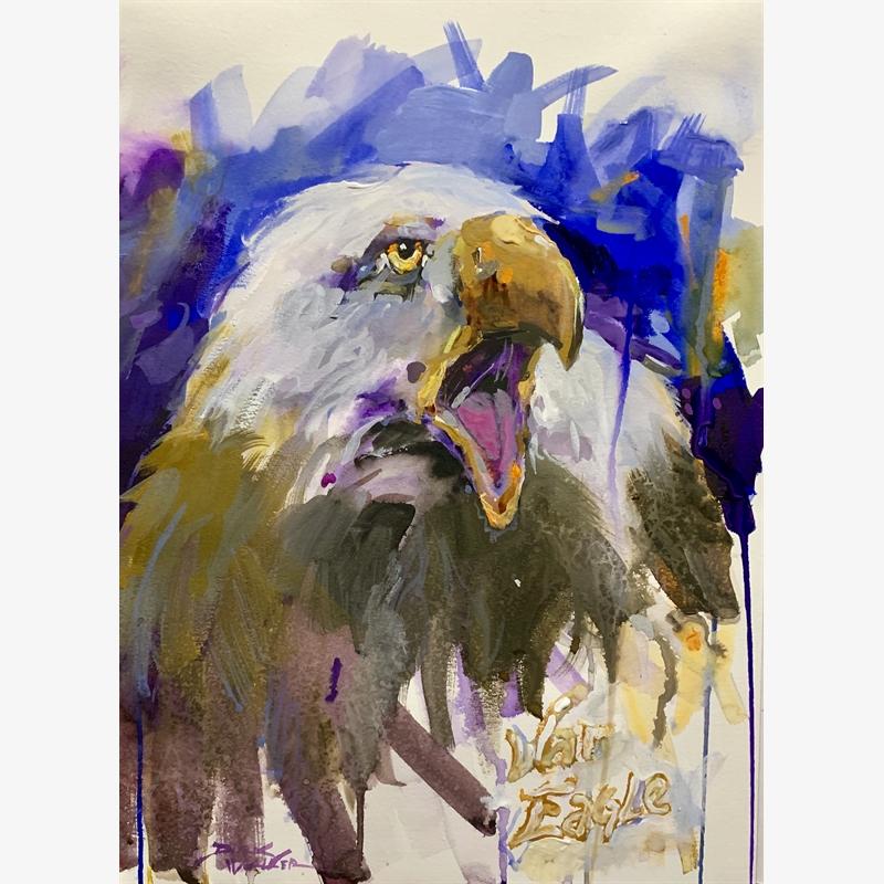 War Eagle, 2019