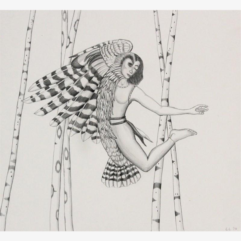Owl/Woman, 2016