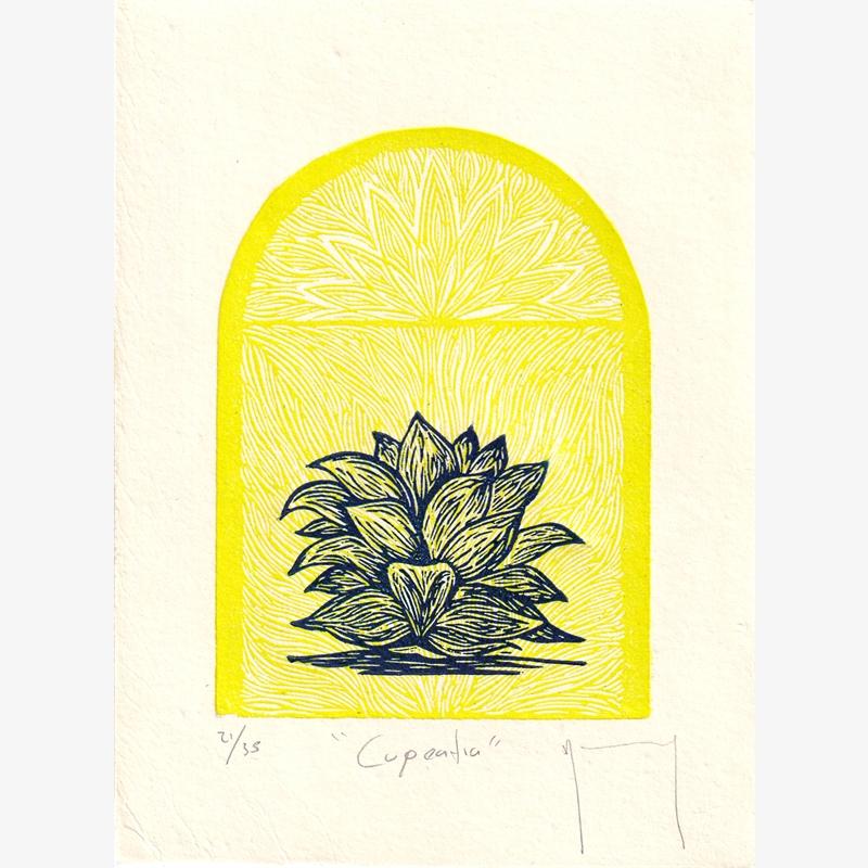 Cupeatra (21/35), 2020