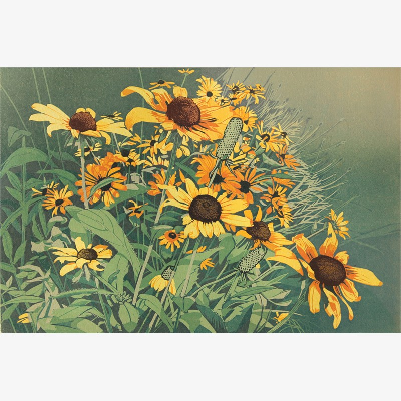 Late Summer Blooms (unframed)
