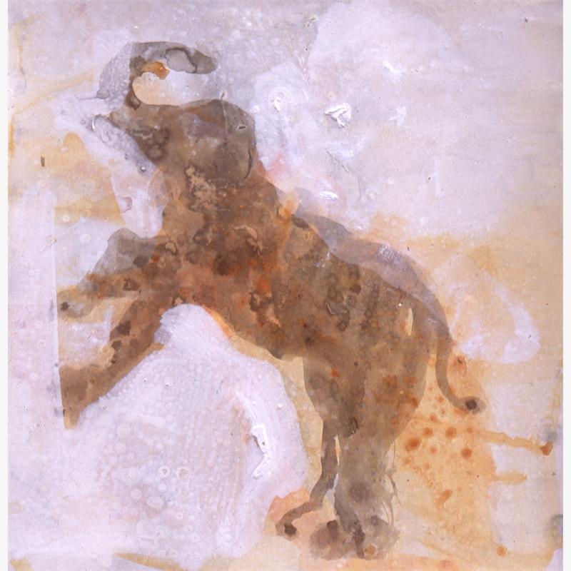 Judy's Elephant, 1995