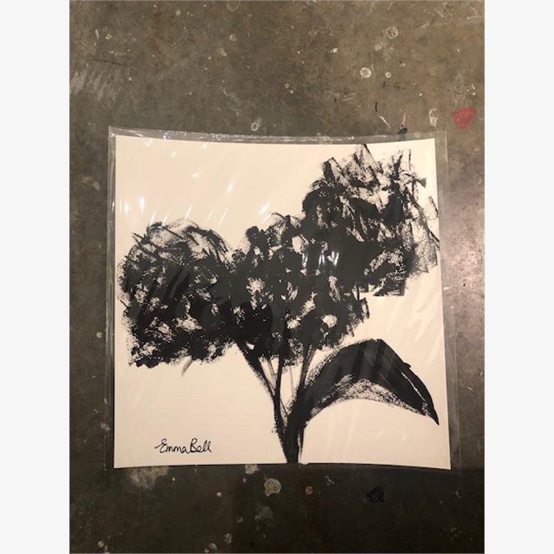 Black & White Three Hydrangeas, 2018