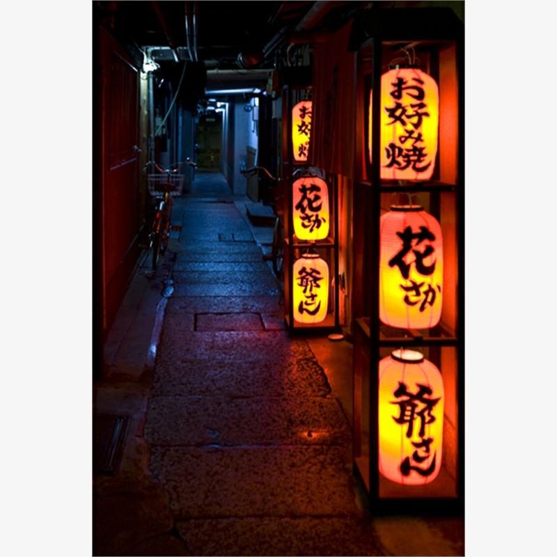 Lantern Alley. Kyoto, Japan