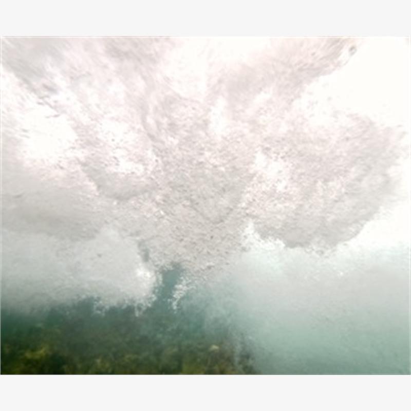 White wave, 2014