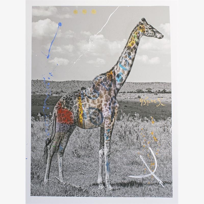 Giraffa by Arno Elias