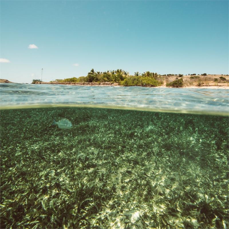 The Lagoon by Sébastien Martinon