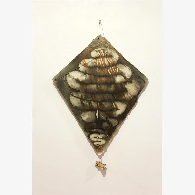 Serpiente Kite, 2002