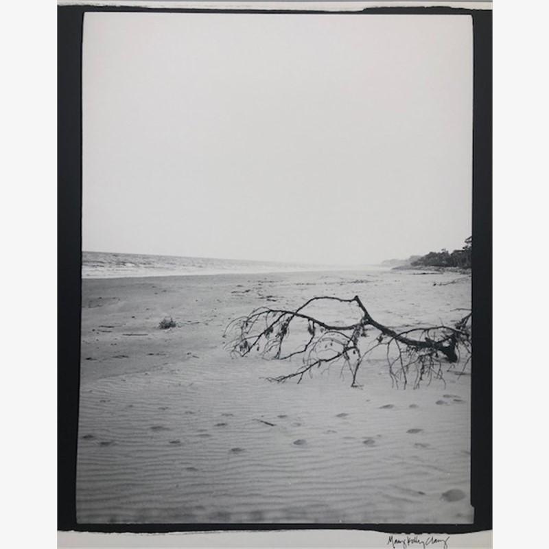 Shoreline - Natural Wood - Vertical