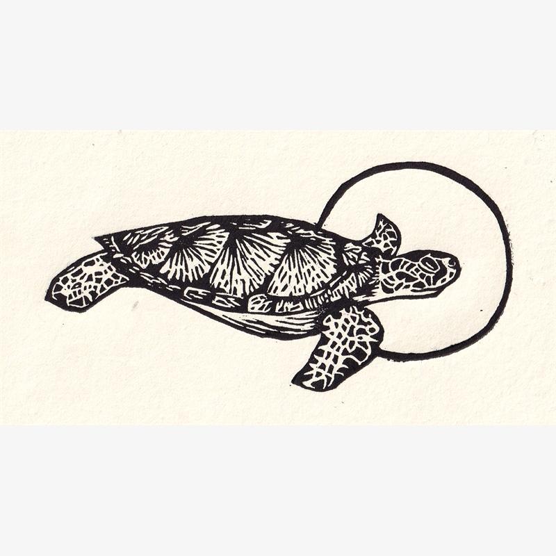 Tortuga (5/30), 2020