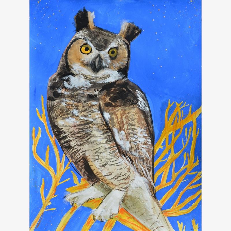 Our Neighborhood Great Horned Owl, 2020