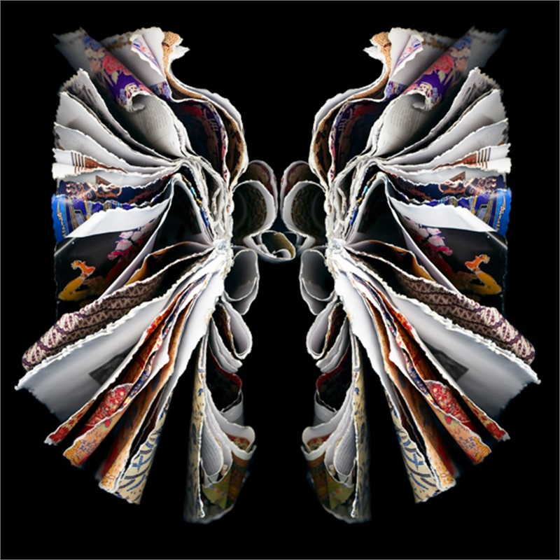 Moth (4/25), 2007