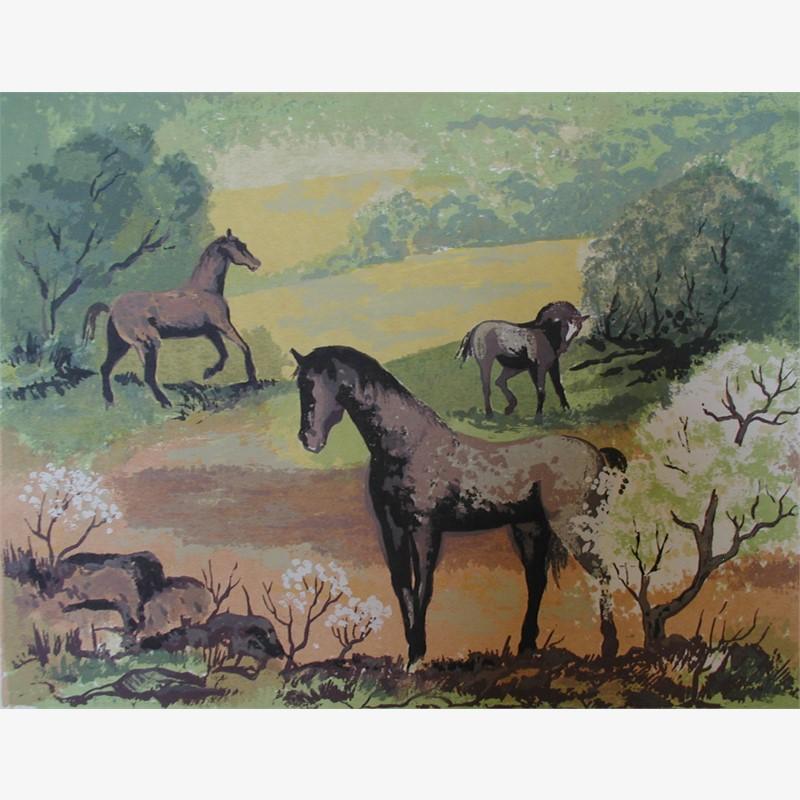 Spring Pasture (47/130)