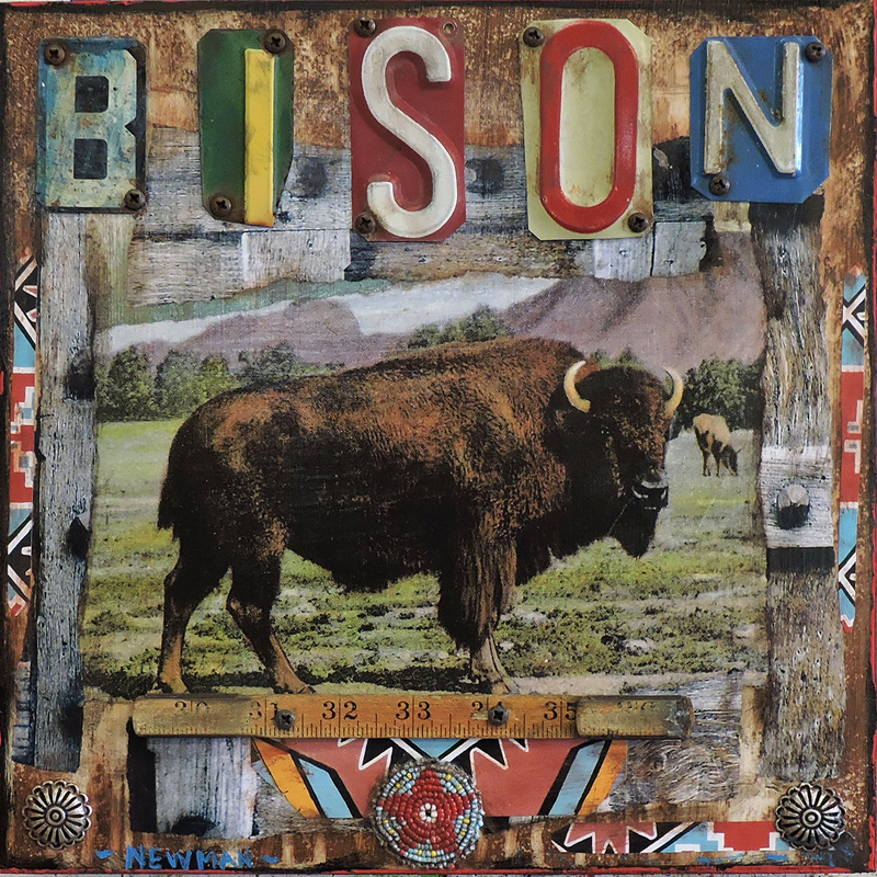 """Bison Series"""
