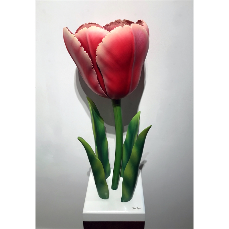 One of a Kind Tulip by Daniel Meyer