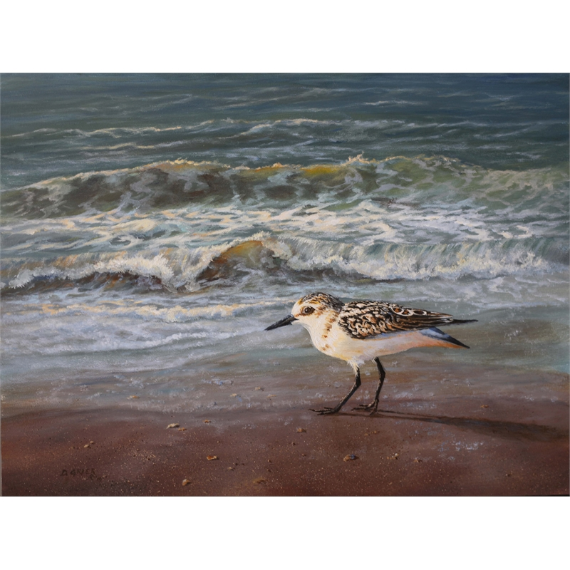 Surf and Sandpiper by Douglas Grier -- Giclee Prints