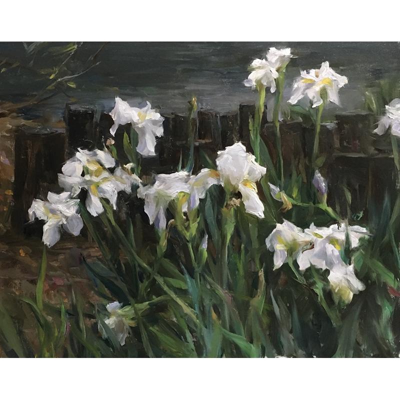 Iris Garden, 2020