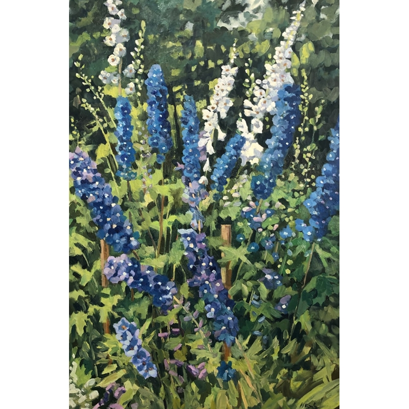 Delphiniums Reaching For The Light