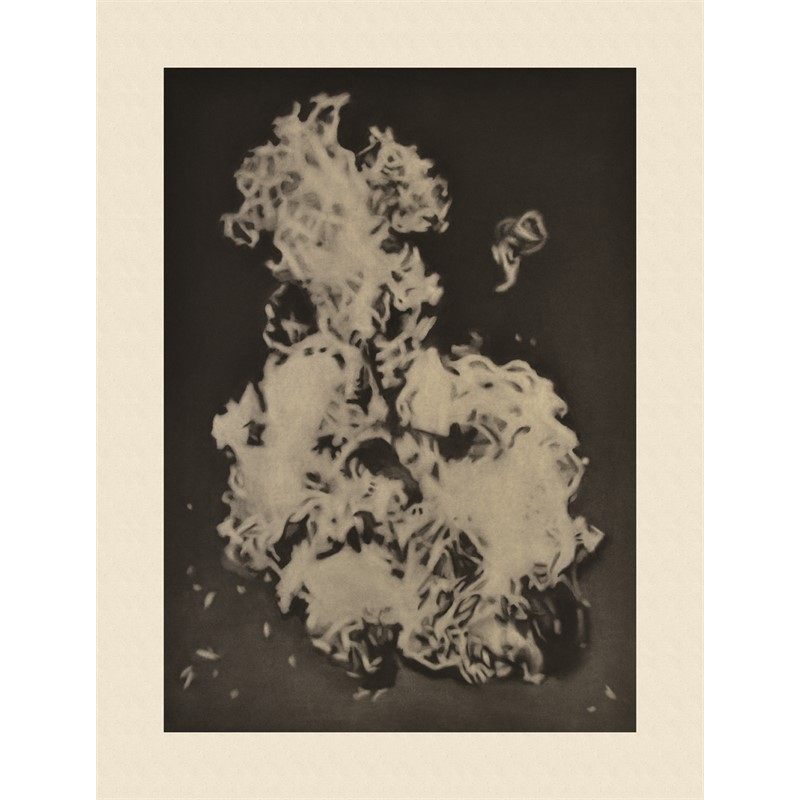 Self Immolation_037, 2012