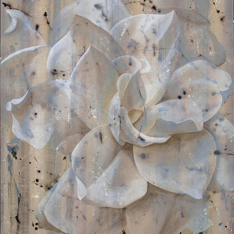 Snow Leopard by Deborah Bigeleisen