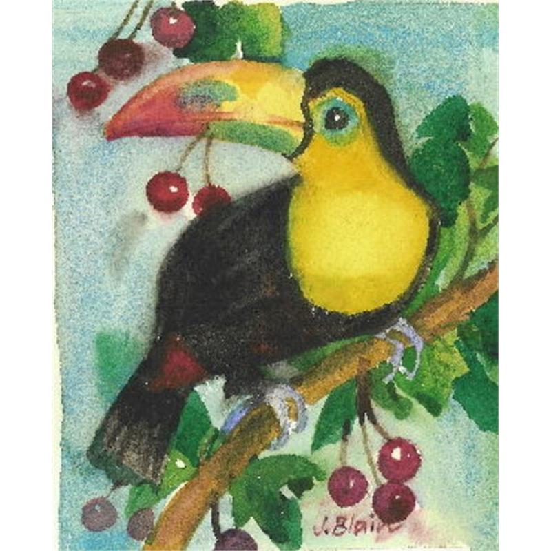 Toucan & Cherries