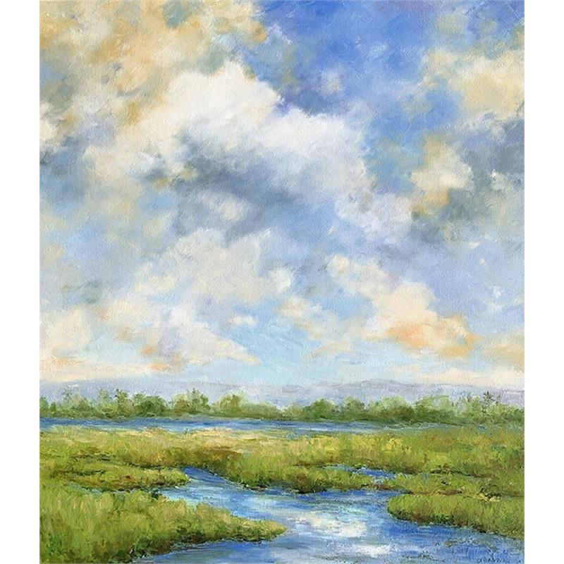 Marsh Inlet