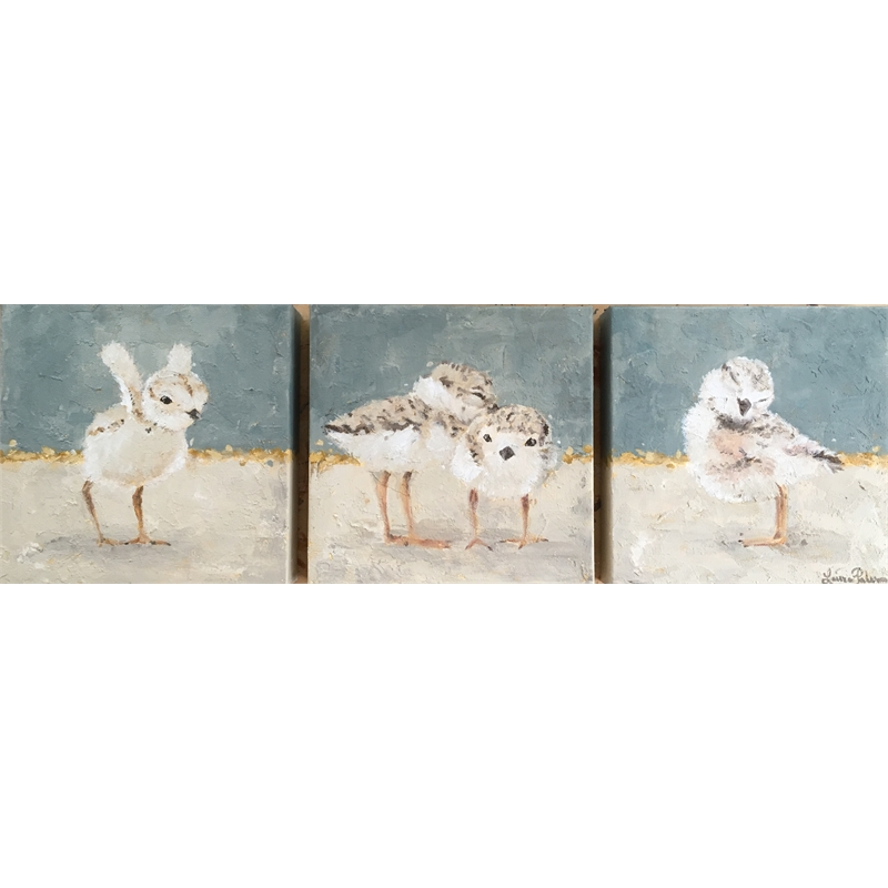 Piping Plovers ~ Triptych , 2020