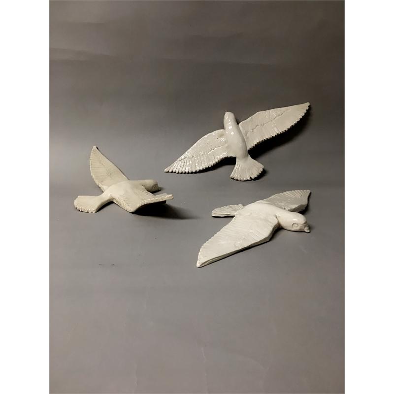 Swallow in Flight, 2019