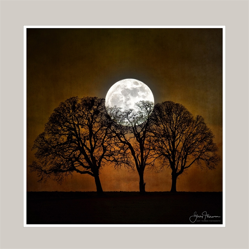 Bad Moon Rising (small) (Edition 2), 2019