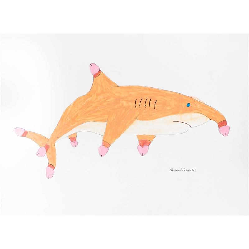Penis Shark