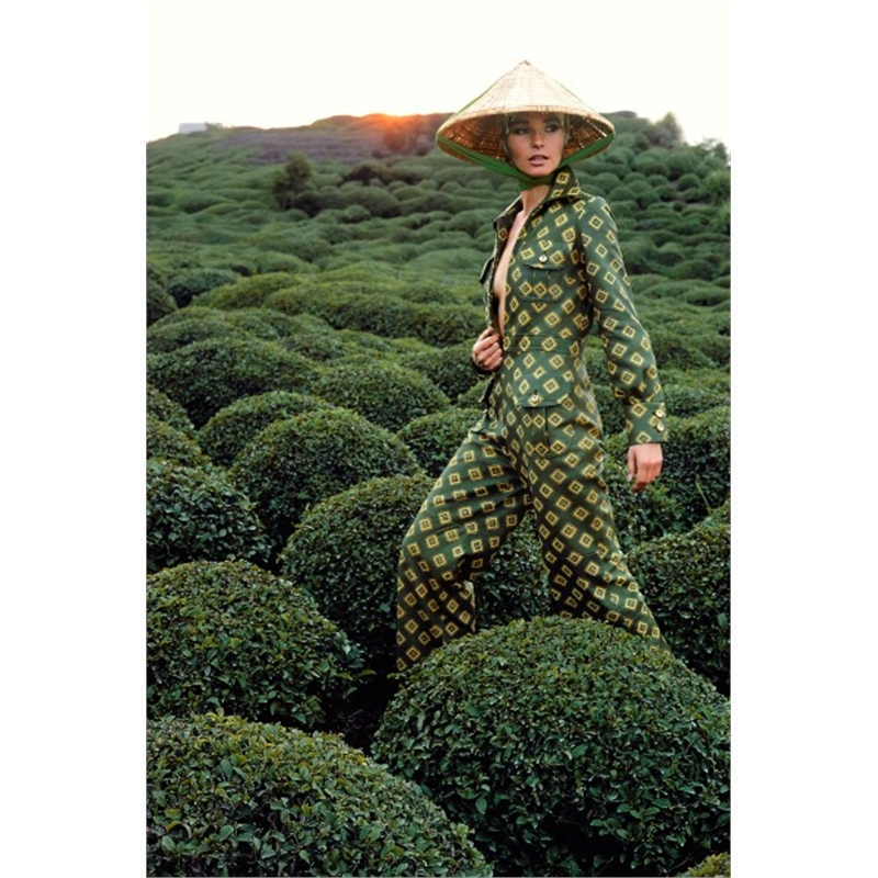 Japan: Tea Field at Shimizu (Edition 16/100), 1969