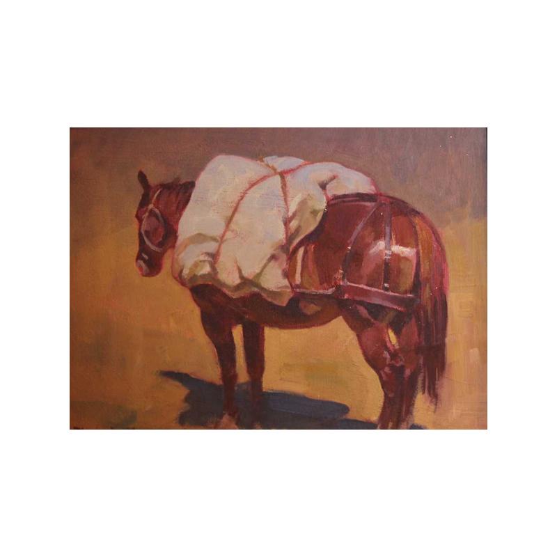 Packhorse Study