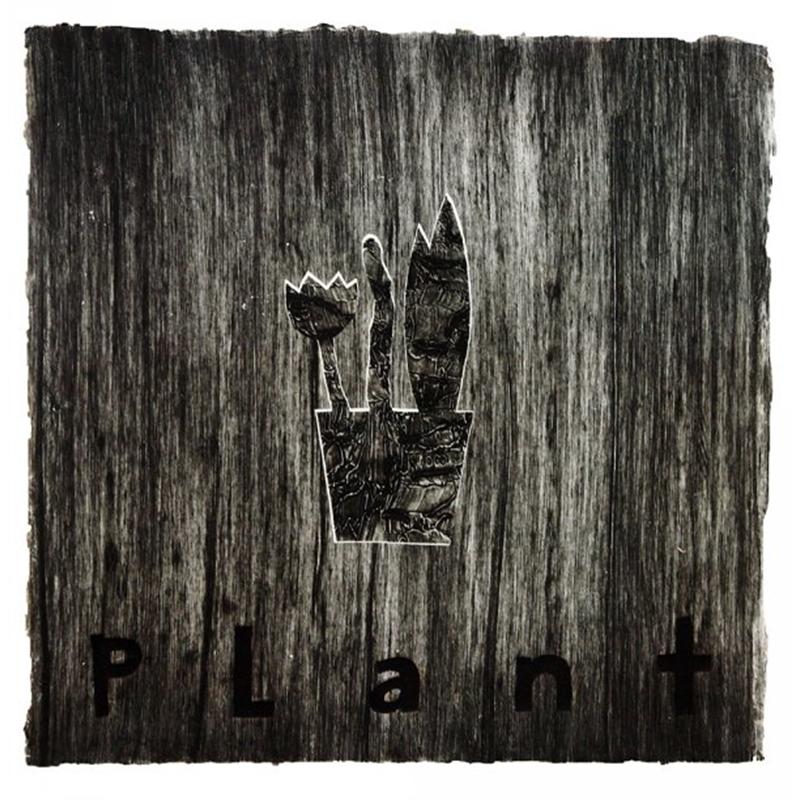 Plant (1/3), 1998